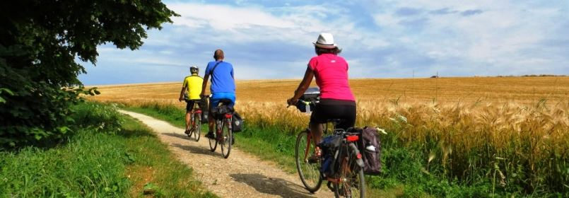 Cycling Tour from Paris to London - Cycling through Fields